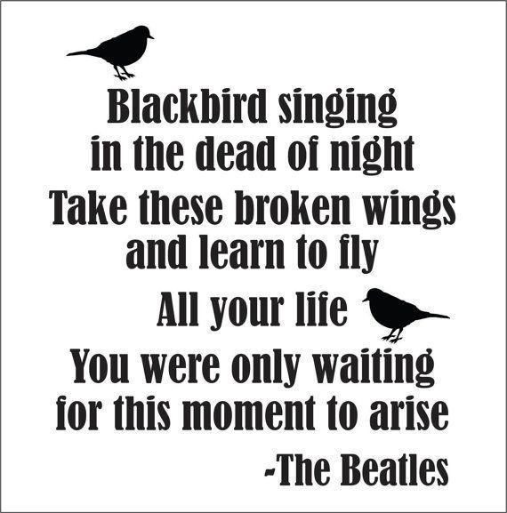 Songtext The Beatles  Blackbird Lyrics  Golyrde