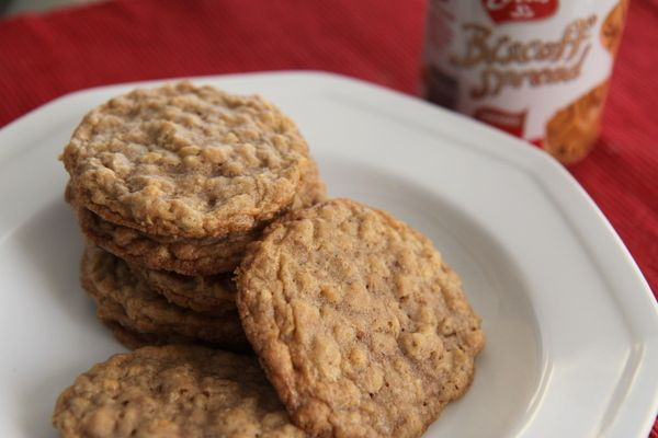 Biscoff Oatmeal Cookies | There's a Party in My Tummy! | Pinterest