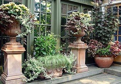 lovely arrangement of plants and planters