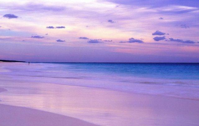 Pink sands beach bahamas nature pinterest for Bahamas pink sand beach