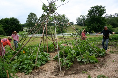 Pin by ar families on visit my kitchen garden pinterest Sisters garden