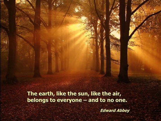 Edward Abbey Nature Quotes. QuotesGram