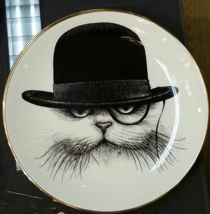 Cat in bowler hat, with monocle small plate at Gracious Home, New York ...