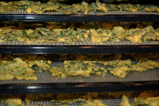 vegan cheddar kale chips | Healthy Recipes | Pinterest