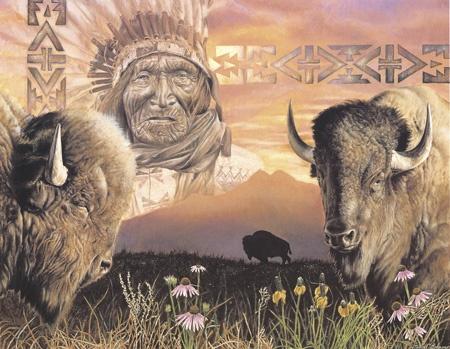 buffalo spirit native art amp wisdom pinterest