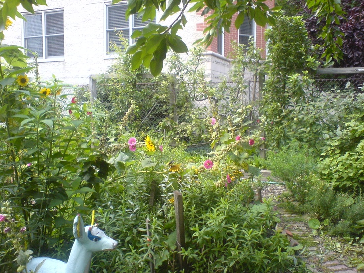 community garden outdoor garden ideas pinterest