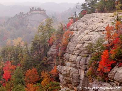 Autumn in the Red River Gorge, Kentucky