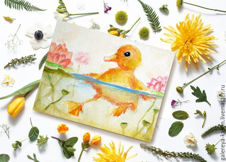 Раскраска красивых птиц