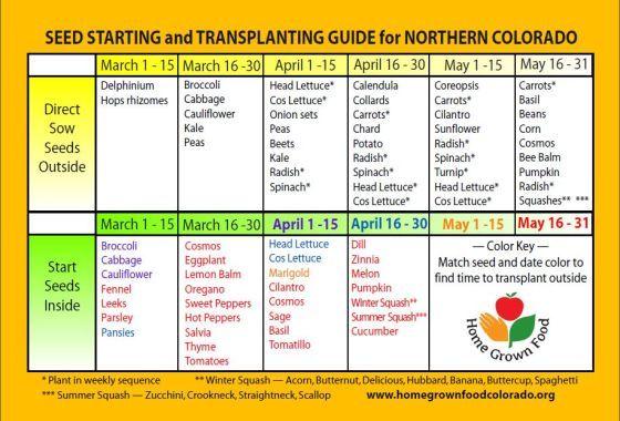 Seed Starting Planting Calendar Gardening Pinterest