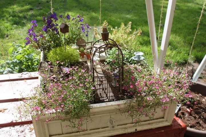 Fairy garden ideas fairy garden gardening pinterest for Pinterest garden designs