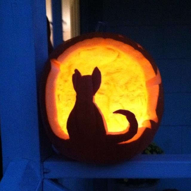 Black cat pumpkin spooktacular pinterest for Cat carved into pumpkin