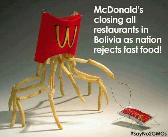 say no to fast food Fast food outlets should be banned from opening within 400 metres of every school in the country to tackle the obesity epidemic, child doctors say the royal college of paediatrics and child health is calling for the measure to be part of an updated childhood obesity strategy which the.