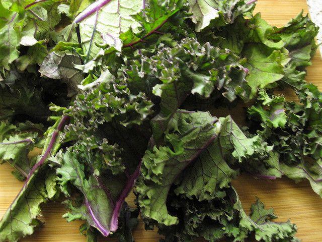 kale pesto | Recipes to Try | Pinterest