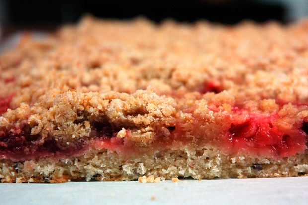 Rhubarb and strawberry snacking cake, with a brown sugar crumble top ...