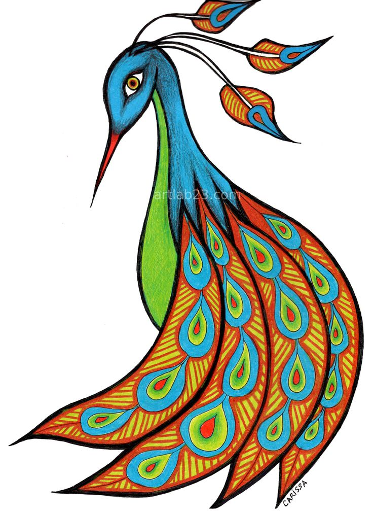 Simple colorful peacock drawing - photo#4