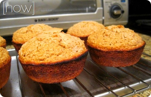 Sunflower Butter Bran Muffins Recipe — Dishmaps