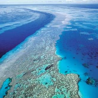 Great Barrier Reef- Australia (off the coast of Queensland and is the largest coral reef system in the world)
