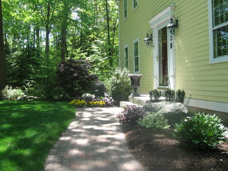 Best low maintenance landscaping plants for Low maintenance foundation shrubs
