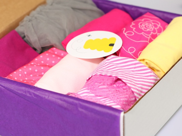 Wittlebee   Sample Boxes