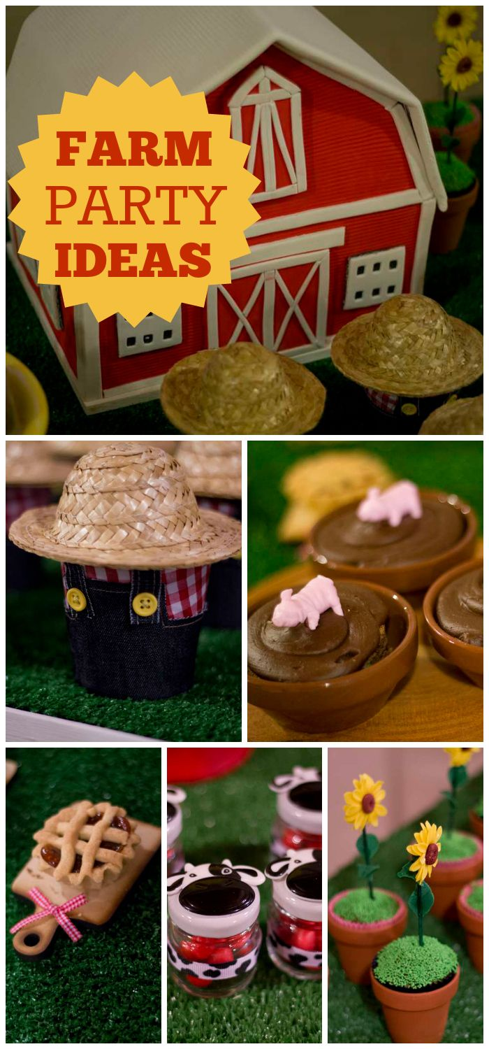 A farm themed birthday party with denim, red gingham and adorable tiny treats!  See more party ideas at CatchMyParty.com!