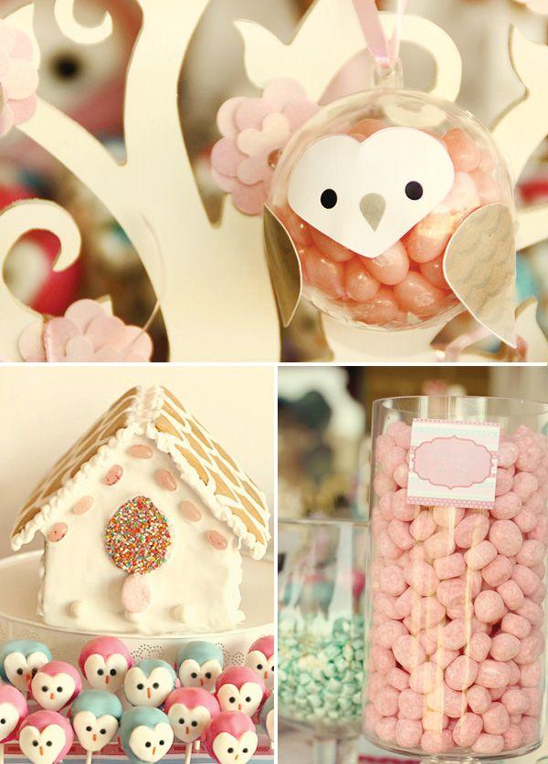Baby owl theme party.