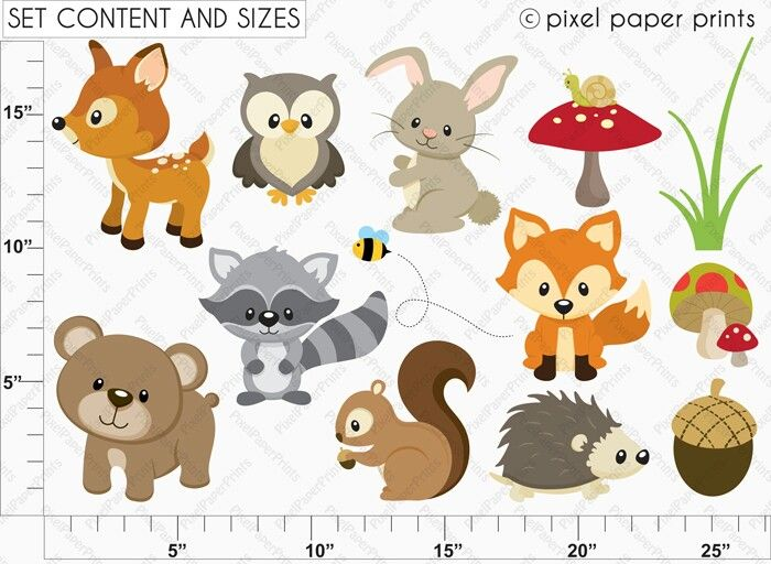 Baby forest animals clipart - photo#13