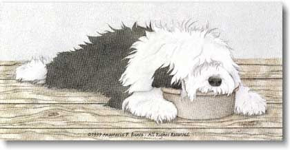 OLD ENGLISH SHEEPDOG ON SHOW BENCH 1940/'S VERNON STOKES DOG PRINT MOUNTED