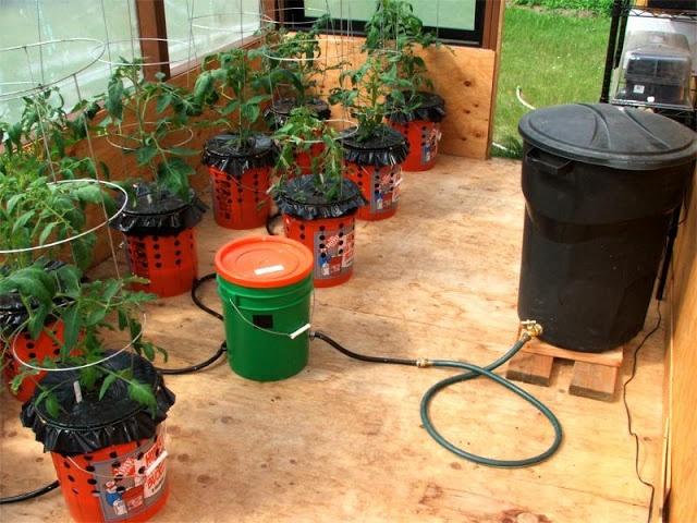 self watering system Raiz Garden Pinterest