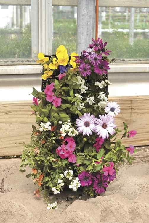 Pinterest Vertical Gardening Ideas Photograph Vertical Gar