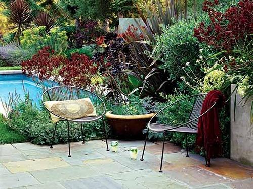 Xeriscape Backyard Ideas : Xeriscape backyard  Yard  Pinterest