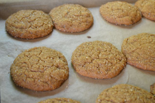 Spicy Molasses Ginger Cookies | Recipes | Pinterest