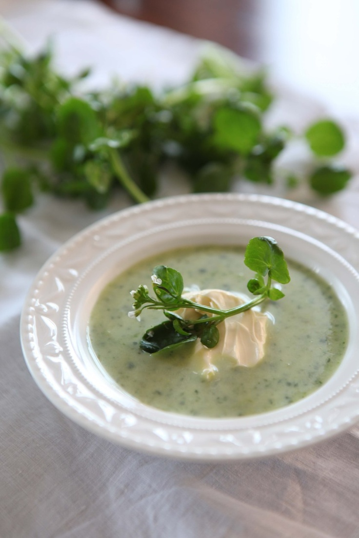 Watercress Soup Recipe — Dishmaps
