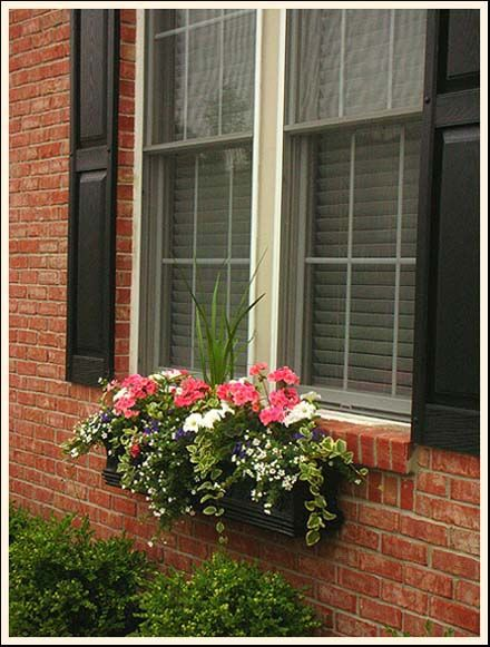 Window flower box gardening landscaping ideas pinterest for Window garden designs