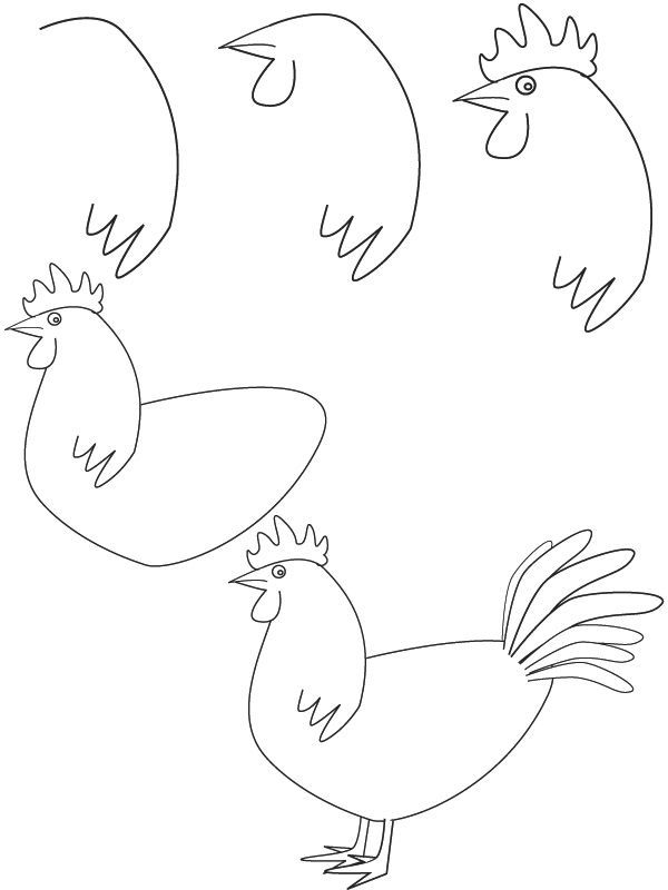 Easy chicken drawings