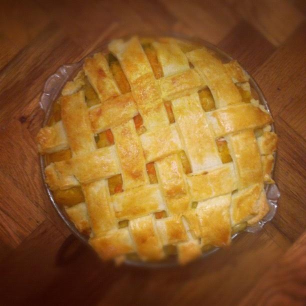 squash butternut squash lasagna butternut squash and lentil pot pie ...