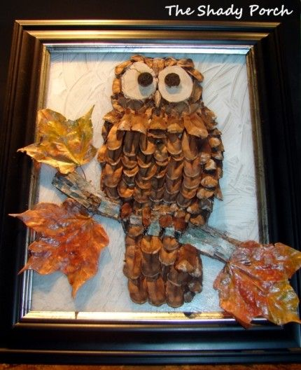 Framed pine cone owl diy pinterest for Pine cone art projects