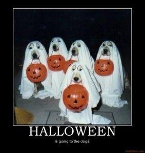 dog halloween words