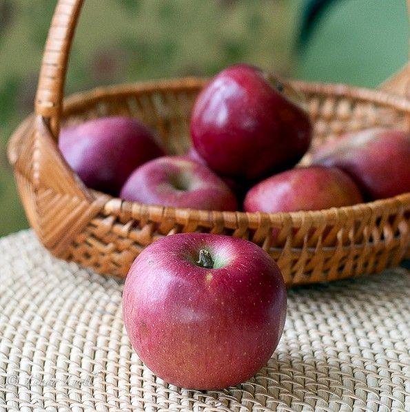 Grandma Ople's Apple Pie | Delicious | Pinterest