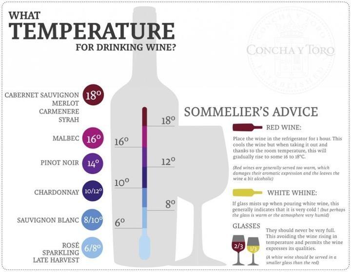 Ideal Wine Temperatures Useful Kitchen Tips Pinterest