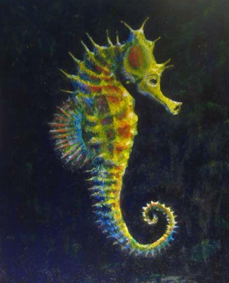 Seahorse drawings pinterest