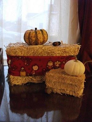 .: His frugal Servant :.: Fun DIY Autumn decor