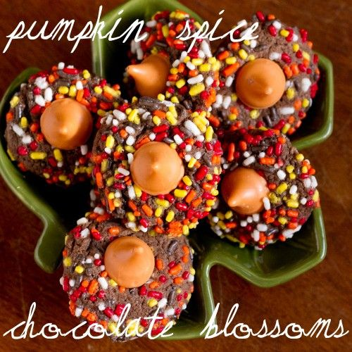 More like this: pumpkin spice , fall pumpkins and blossoms .