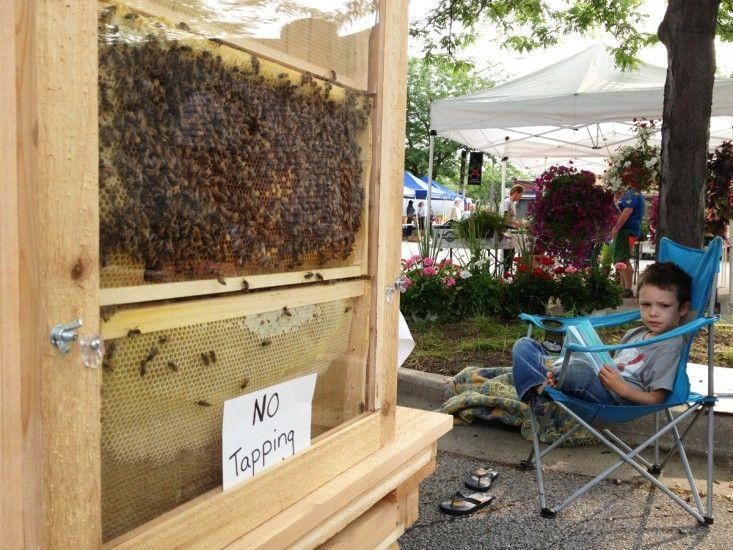Michigan City Indiana farmers market local bees via @Christina Tenhundfeld