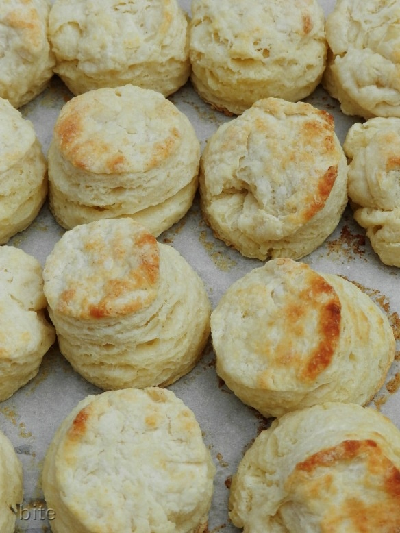 buttermilk biscuits=everyone needs a recipe for these!!!!