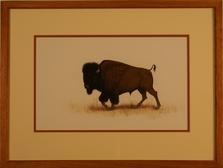 Paladine Roye, Native American Artist    Lone Buffalo