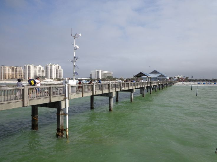 Pier 60 clearwater beach pinterest for Clearwater beach fishing