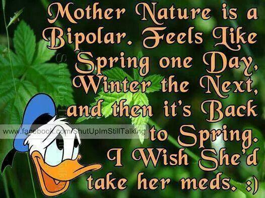 Mother nature is bi polar Cartoon sayings Pinterest