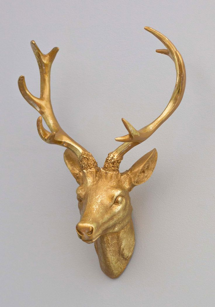 Antler me this wall decor for Antler decoration ideas