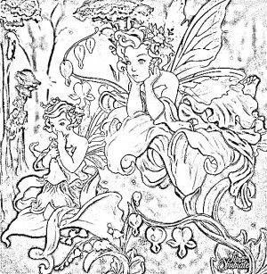 Kleurplaat voor volwassenen  Zentangel / Mandala / Doodle ...