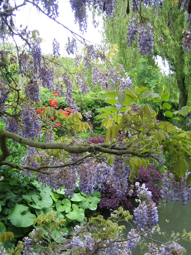 Monet 39 s garden giverny france monet 39 s garden pinterest for Monet s garden france